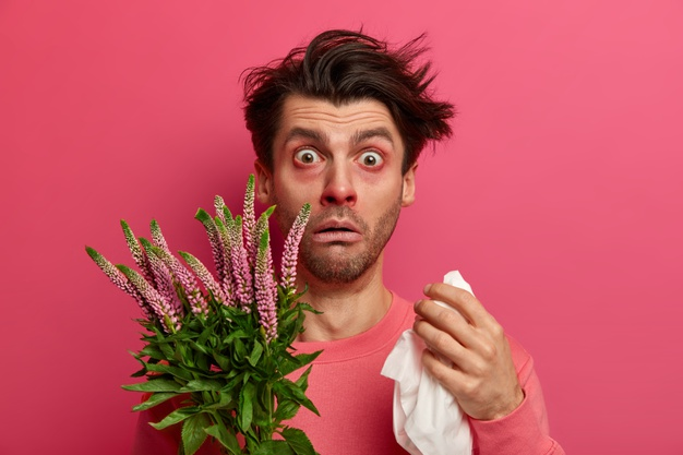 allergie rhume des foins